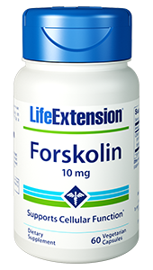 Life Extension Forskolin