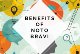 noto bravi, memory, nootropic, ginseng, herbal