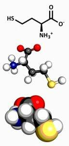Homocysteine, methylation. methyl cpg, amino acid
