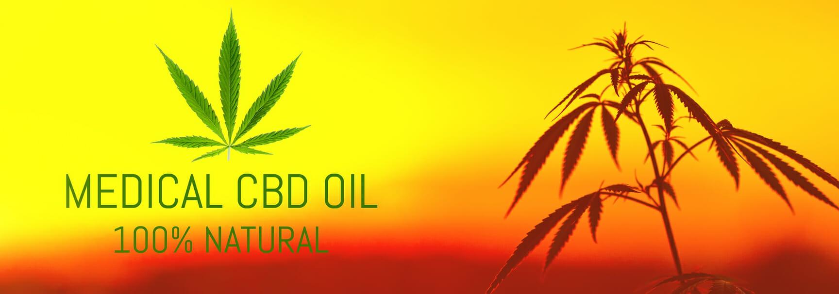CBD Oil, medical marijuana, cannabis