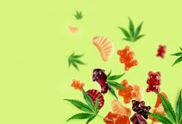 What is the Best Form of CBD? – Suppositories, Sandwiches & More, DR Vitamin Solutions, blog, hemp, quicksilver scientific