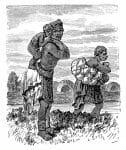 Khoi pastoralist, Hottentots