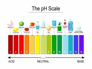 diagram of pH scale with examples